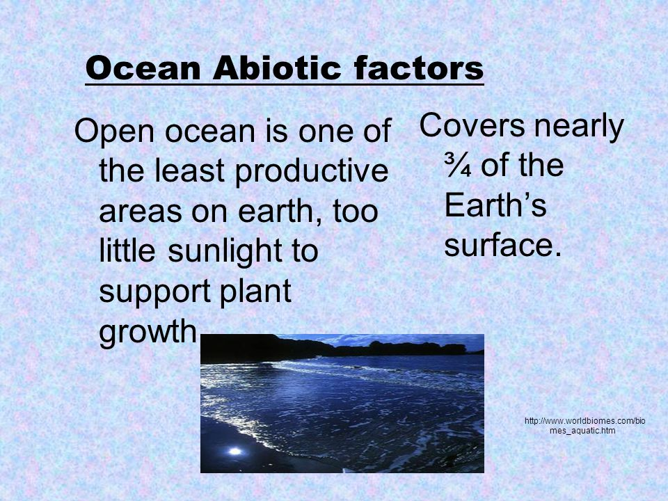 Ocean Abiotic factors Open ocean is one of the least productive areas on earth, too little sunlight to support plant growth Covers nearly ¾ of the Earth's surface.