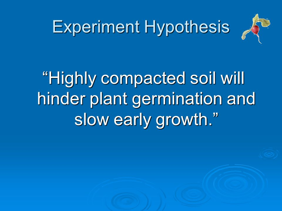 Experiment Hypothesis Highly compacted soil will hinder plant germination and slow early growth. Highly compacted soil will hinder plant germination and slow early growth.