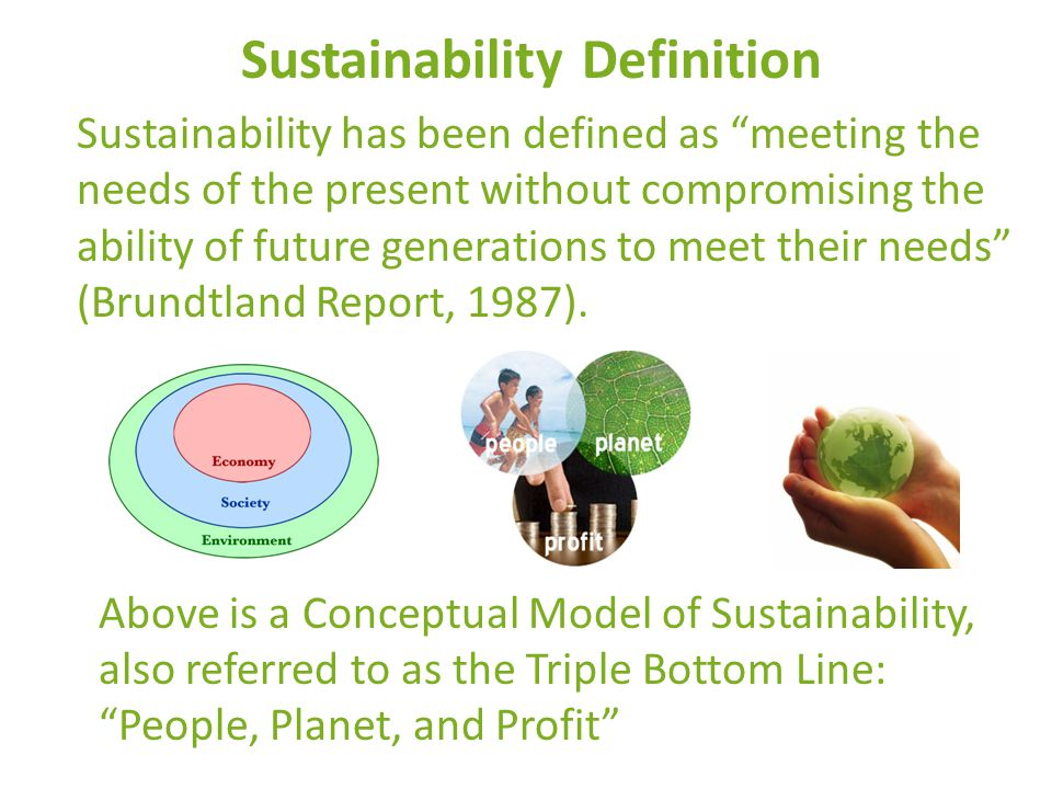 Sustainability Definition Sustainability has been defined as meeting the needs of the present without compromising the ability of future generations to meet their needs (Brundtland Report, 1987).
