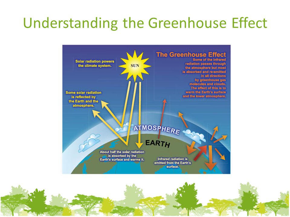 Understanding the Greenhouse Effect