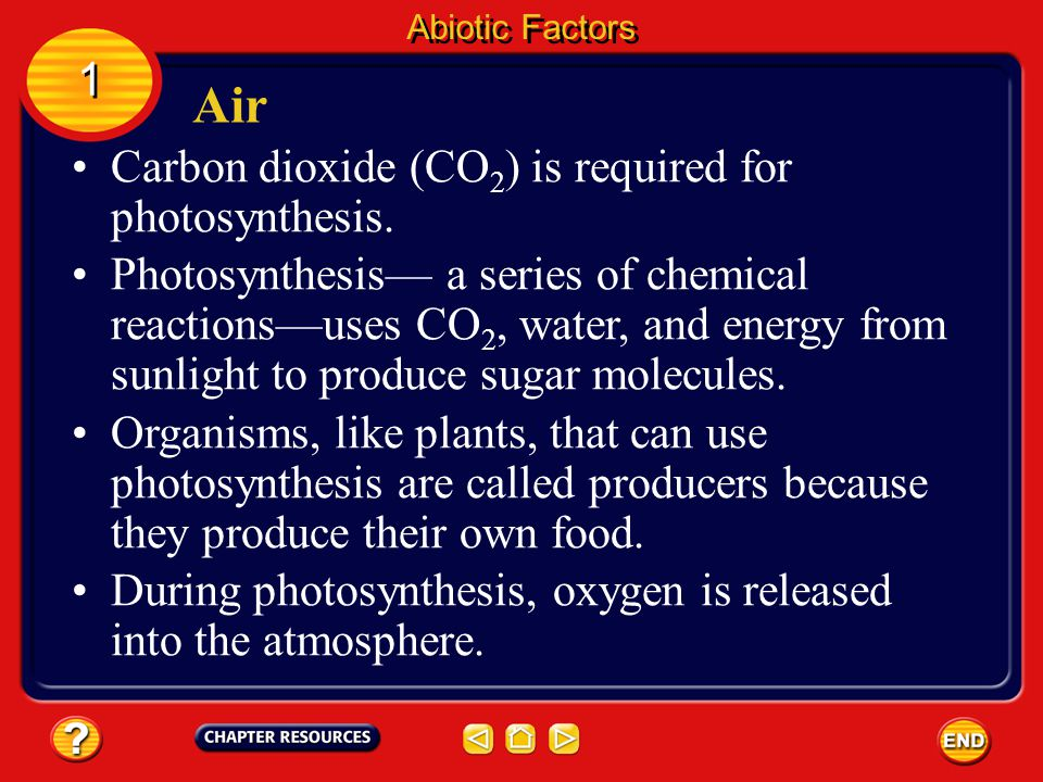 The Carbon Cycle Cycles in Nature 2 2 The carbon cycle begins when producers remove CO 2 from the air during photosynthesis.