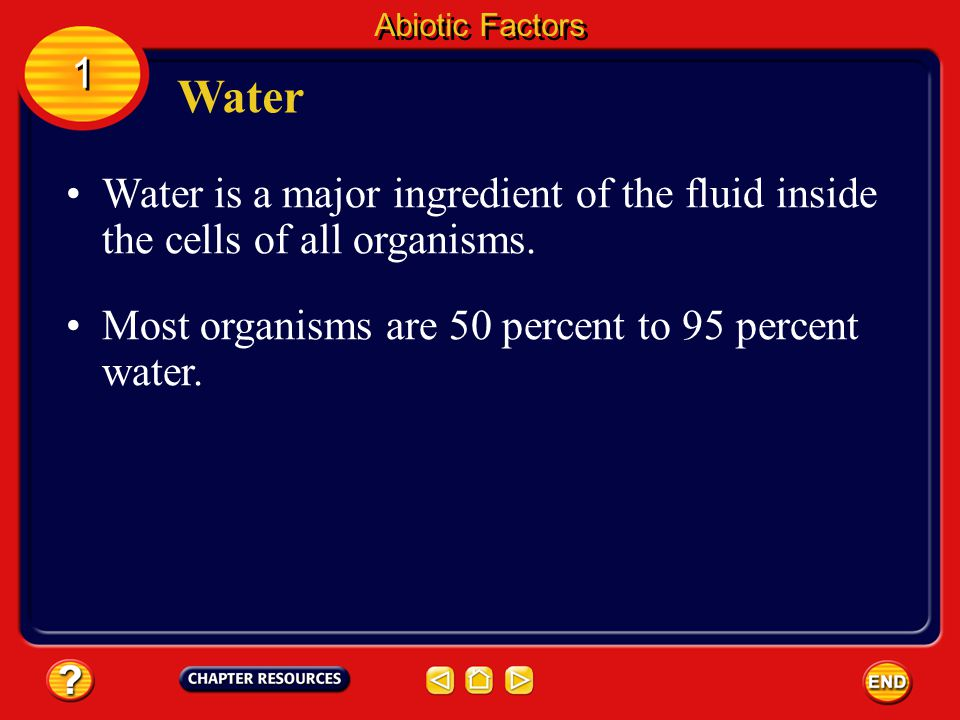 Water is a major ingredient of the fluid inside the cells of all organisms.