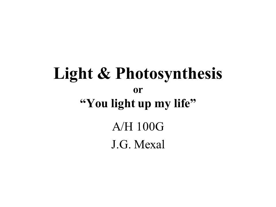 Light and Photobiology Important Dates-- for Druids and Plants Equinox –VernalMarch 23 –AutumnalSeptember 23 Solstice –SummerJune 23 –WinterDecember 23