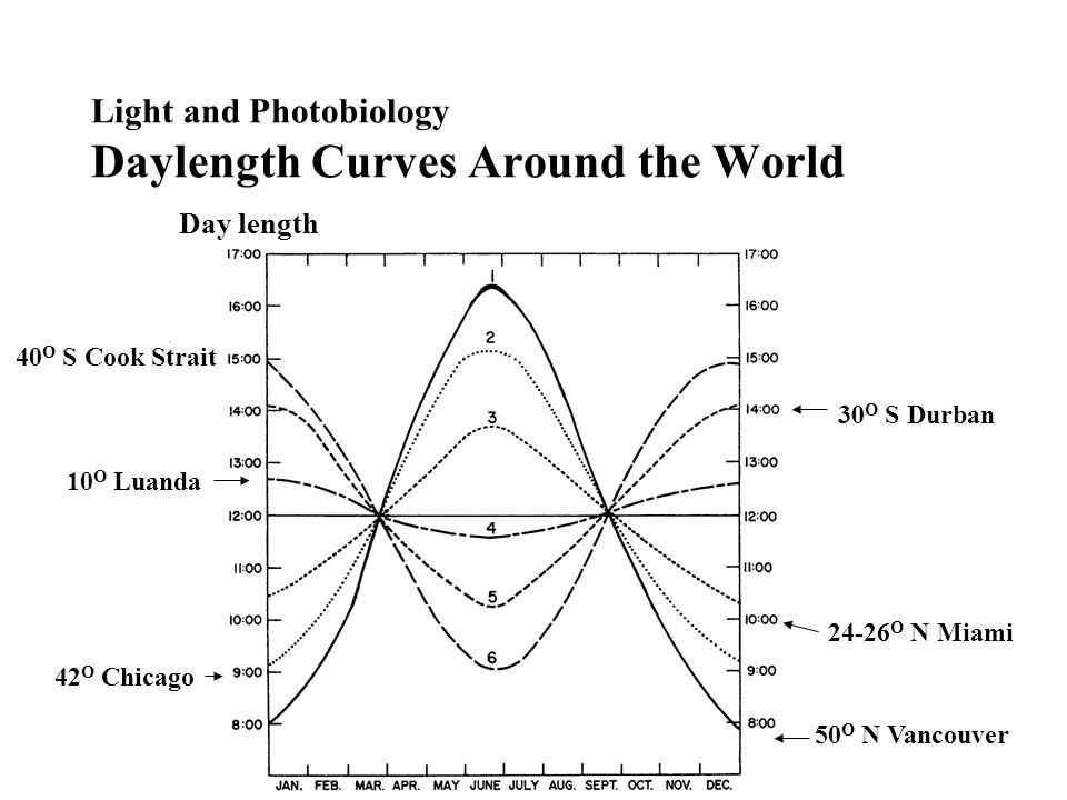 Light and Photobiology Daylength Curves Around the World 50 O N Vancouver 42 O Chicago 24-26 O N Miami 10 O Luanda 30 O S Durban 40 O S Cook Strait Day length
