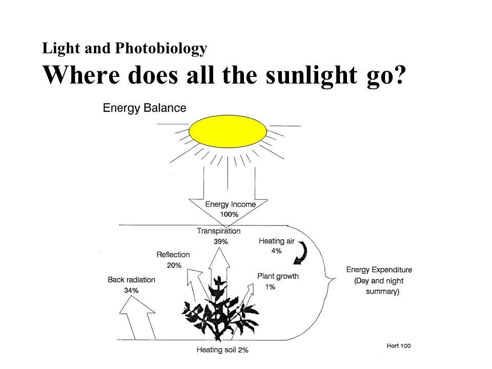 Light Measurement Units Photometric –1 lux = 1 lumen/m 2 –1 fc= 1 lumen/ft 2 –1 fc = 10.76 lux Radiometric –watts/m 2 Photon (Quantum) Flux –µmol/m 2 /s Full Sun = –10,000 fc –1,000 watts/m 2 –2,000 µmol/m 2 /s