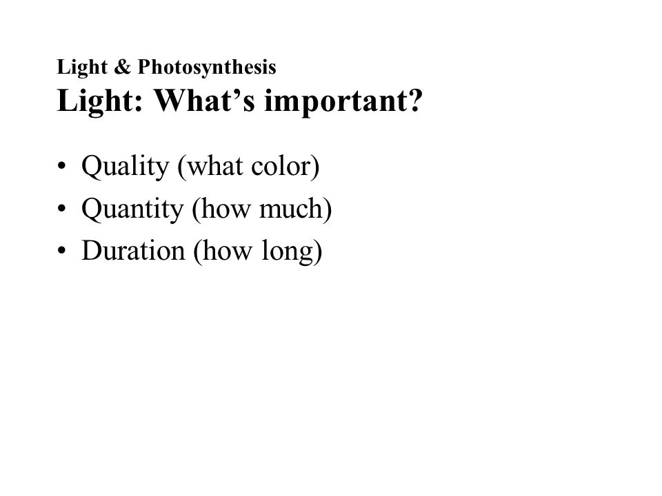 Light & Photosynthesis Light: What's important.