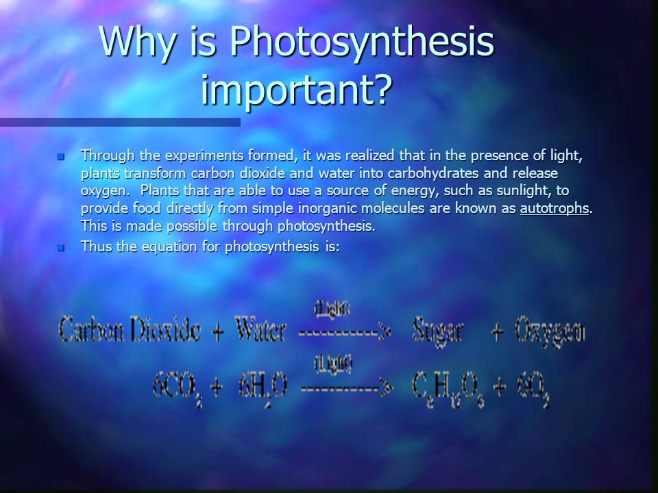 What makes photosynthesis complete.