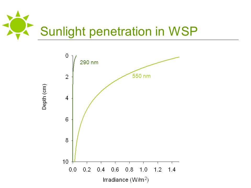 550 nm 290 nm Depth (cm) Sunlight penetration in WSP