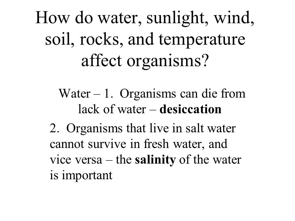 How do water, sunlight, wind, soil, rocks, and temperature affect organisms.