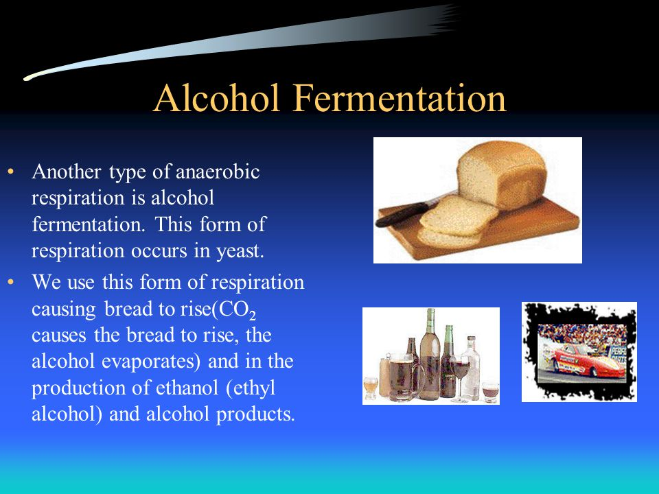 Alcohol Fermentation Another type of anaerobic respiration is alcohol fermentation. This form of respiration occurs in yeast. We use this form of resp