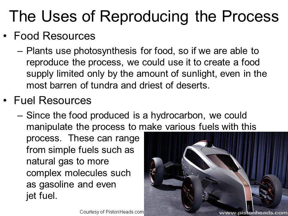 The Uses of Reproducing the Process Food Resources –Plants use photosynthesis for food, so if we are able to reproduce the process, we could use it to create a food supply limited only by the amount of sunlight, even in the most barren of tundra and driest of deserts.