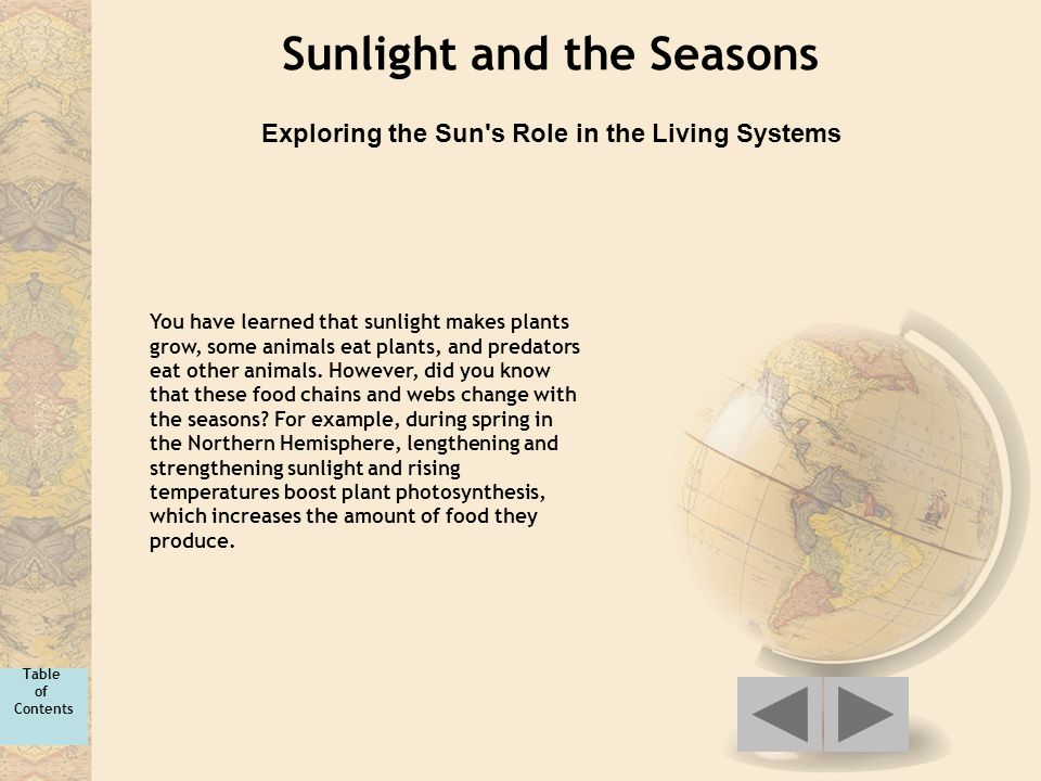 Sunlight and the Seasons Exploring the Sun's Role in the Living Systems You have learned that sunlight makes plants grow, some animals eat plants, and