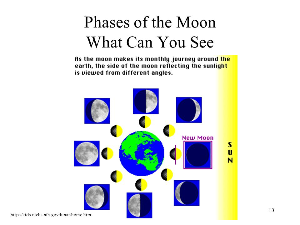 13 Phases of the Moon What Can You See http://kids.niehs.nih.gov/lunar/home.htm