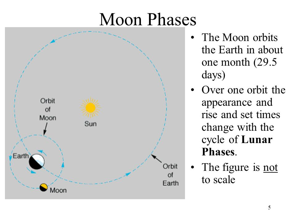 5 Moon Phases The Moon orbits the Earth in about one month (29.5 days) Over one orbit the appearance and rise and set times change with the cycle of L