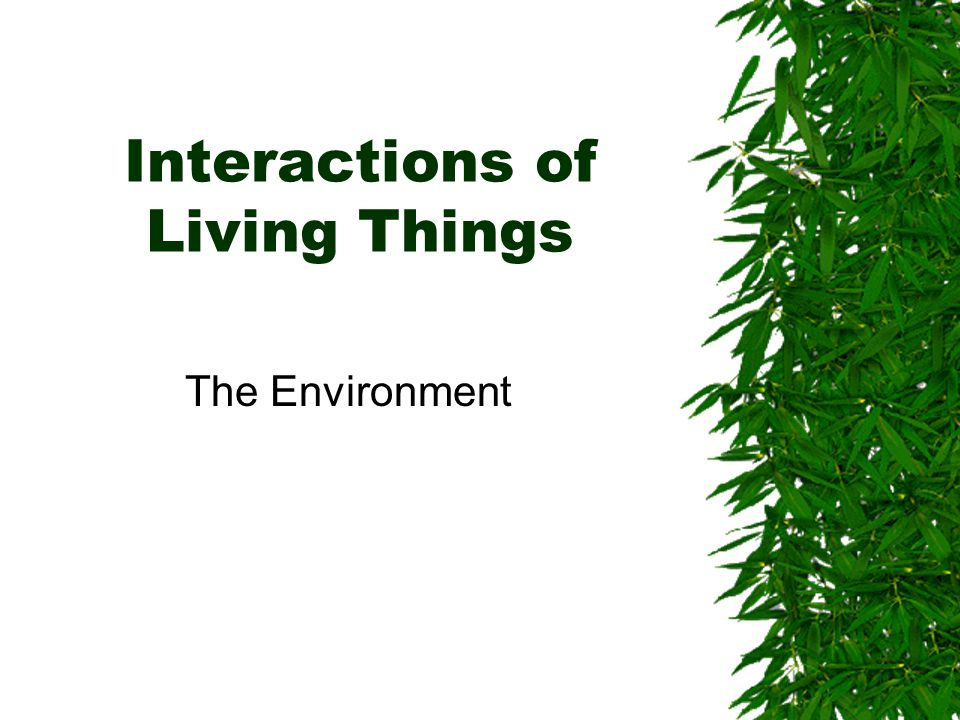 Ecology  All organism, from the smallest bacteria to a blue whale, interact with their environment  Ecology: the study of the interactions among organisms and their environment  Abiotic factors: nonliving parts of the environment  Biotic factors: living or once-living organisms in the environment