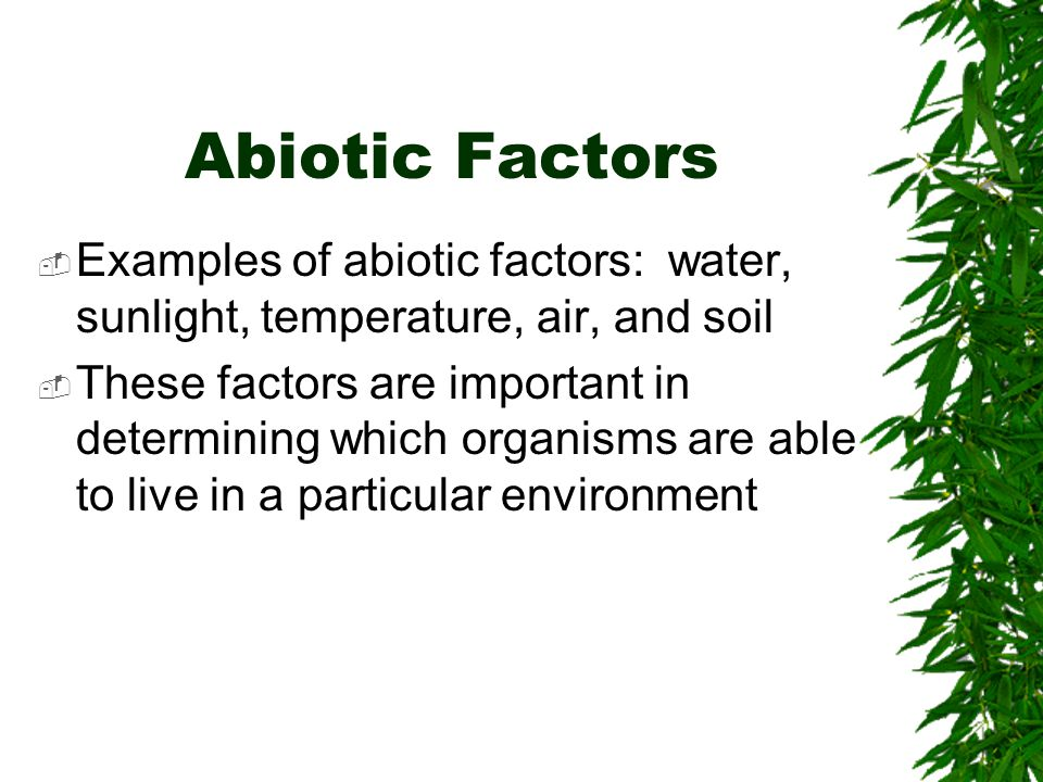Ecologist study biotic and abiotic factors in an environment and the relationship among them.