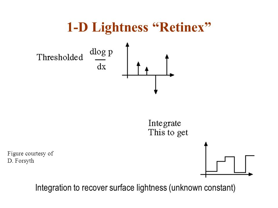1-D Lightness Retinex Integration to recover surface lightness (unknown constant) Figure courtesy of D.