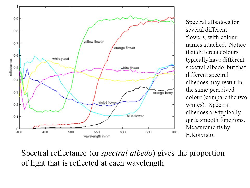 Spectral albedoes for several different flowers, with colour names attached. Notice that different colours typically have different spectral albedo, b