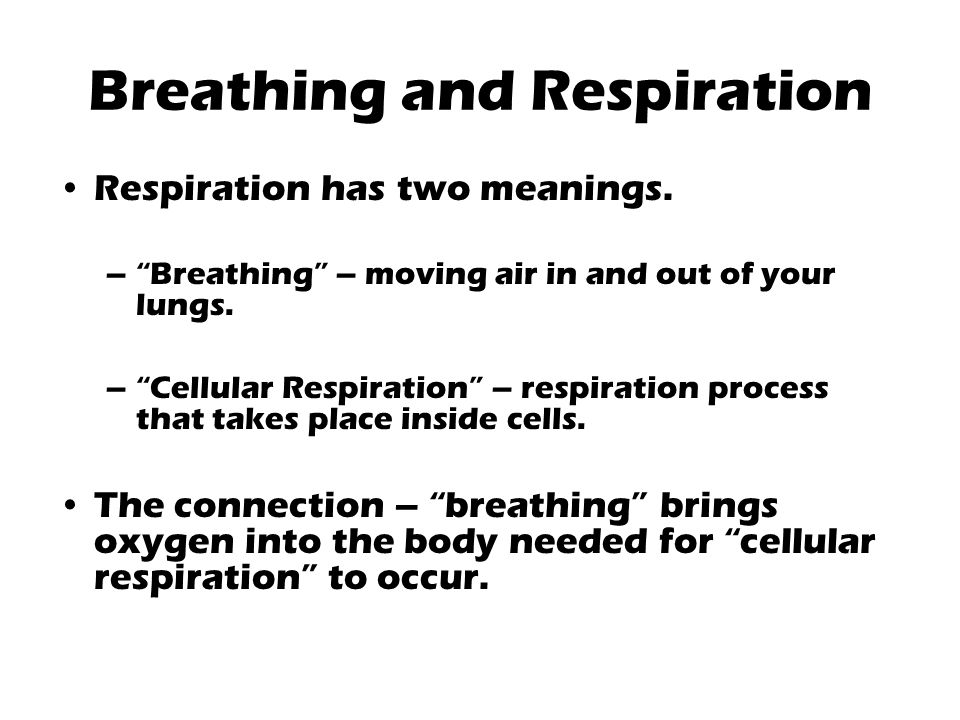 "Breathing and Respiration Respiration has two meanings. –""Breathing"" – moving air in and out of your lungs. –""Cellular Respiration"" – respiration proc"
