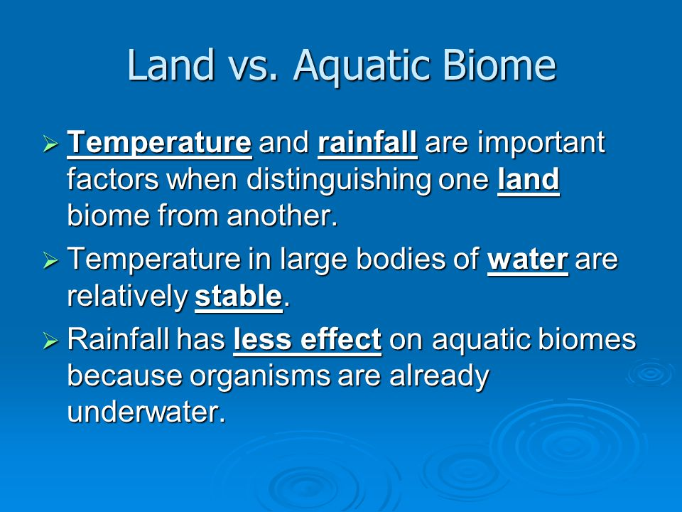 5.A type of standing-water habitat in which the soil is acidic and decay is slow is called a a.