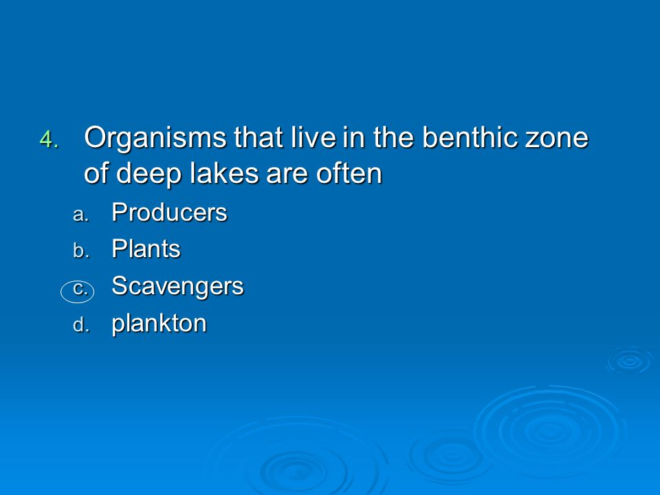 4. Organisms that live in the benthic zone of deep lakes are often a. Producers b. Plants c. Scavengers d. plankton