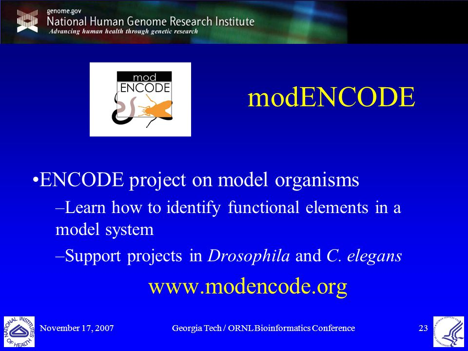 November 17, 2007Georgia Tech / ORNL Bioinformatics Conference23 modENCODE ENCODE project on model organisms –Learn how to identify functional elements in a model system –Support projects in Drosophila and C.