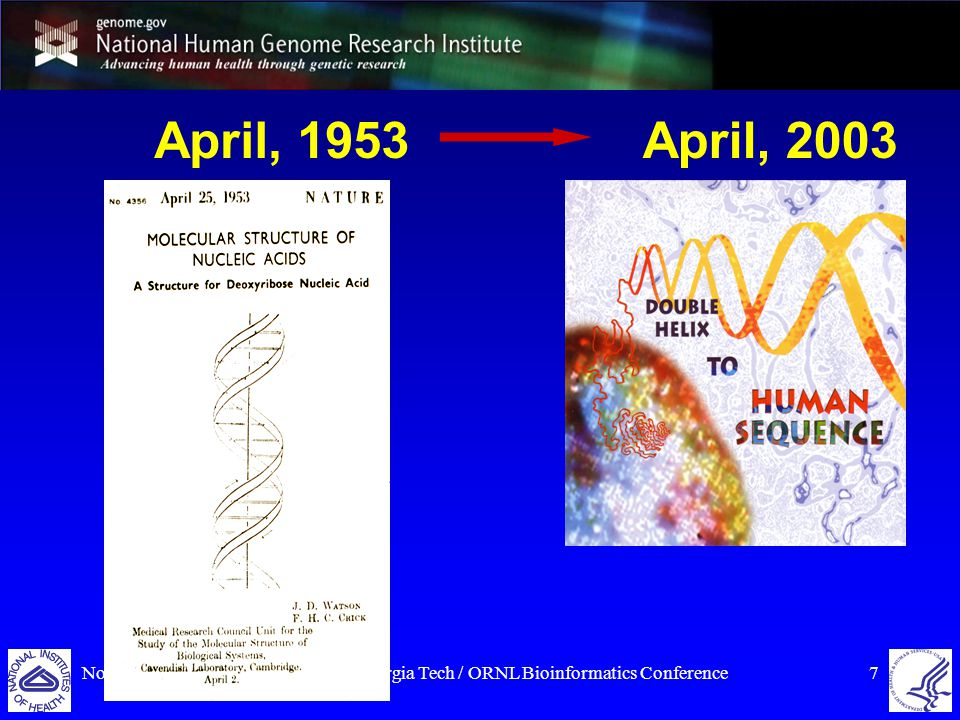 November 17, 2007Georgia Tech / ORNL Bioinformatics Conference18 NIH Roadmap for Epigenomics REFERENCE EPIGENOME MAPPING CENTERS EPIGENOMICS DATA ANALYSIS AND COORDINATION CENTER (EDACC) NCBI REPOSITORY AND PORTAL FOR EPIGENOMIC DATA TECHNOLOGY DEVELOPMENT IN EPIGENOMICS DISCOVERY OF NOVEL EPIGENETIC MARKS IN MAMMALIAN CELLS EPIGENOMICS OF HUMAN HEALTH AND DISEASE http://nihroadmap.nih.gov/epigenomics/grants.asp