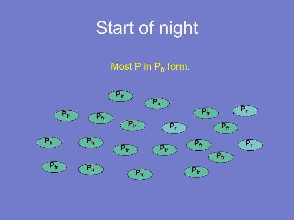 PrPr P fr Start of night P fr PrPr PrPr PrPr PrPr PrPr PrPr PrPr PrPr PrPr PrPr Most P in P fr form.