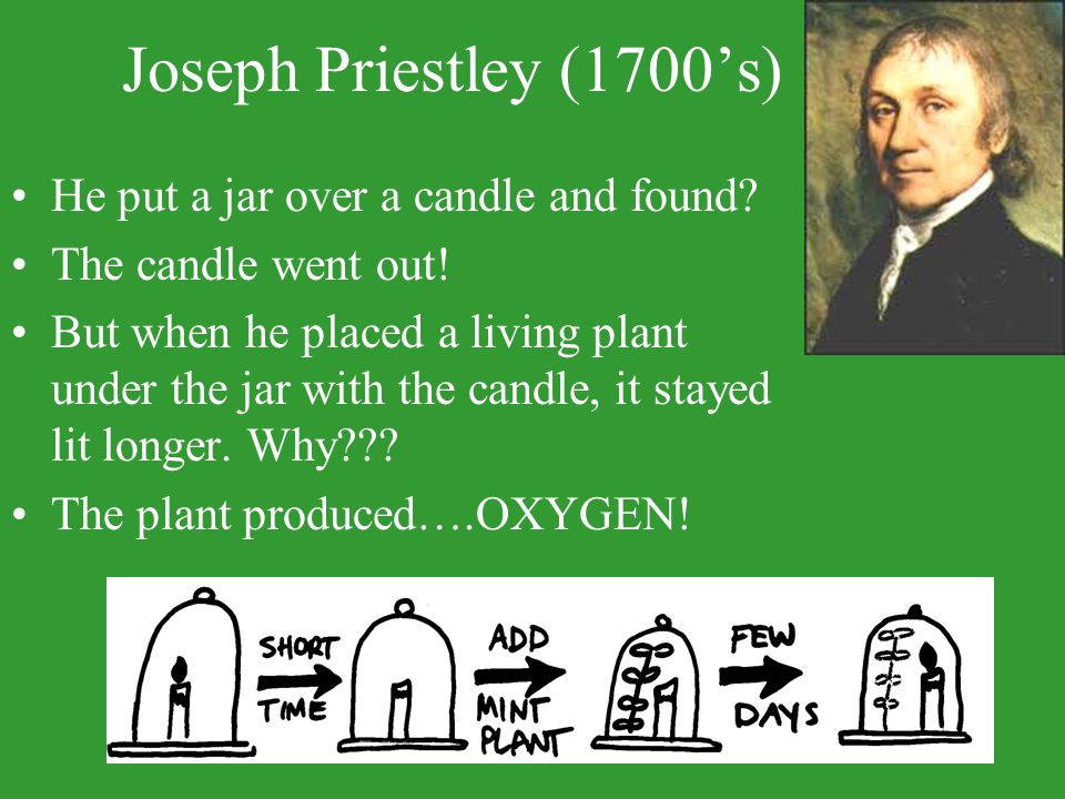 Joseph Priestley (1700's) He put a jar over a candle and found? The candle went out! But when he placed a living plant under the jar with the candle,