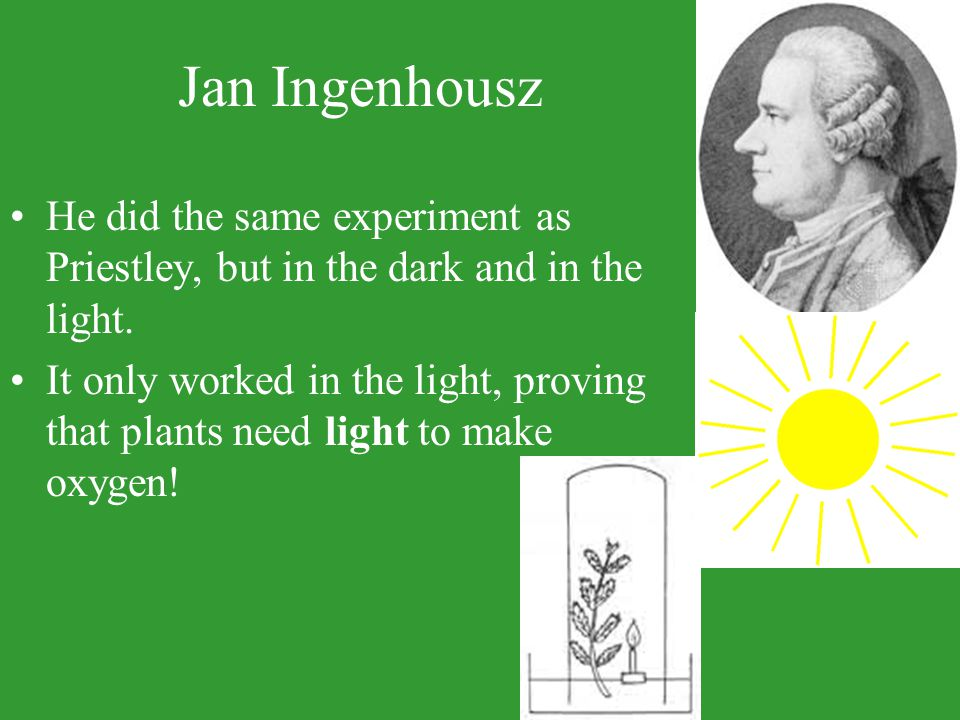 Jan Ingenhousz He did the same experiment as Priestley, but in the dark and in the light. It only worked in the light, proving that plants need light