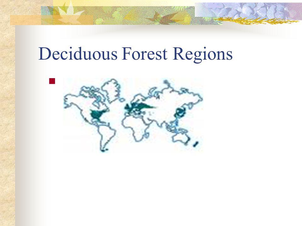 Deciduous Forest Regions