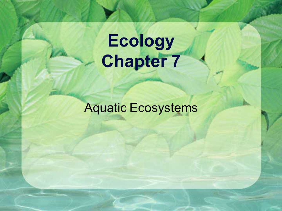 Ecology Chapter 7 Aquatic Ecosystems