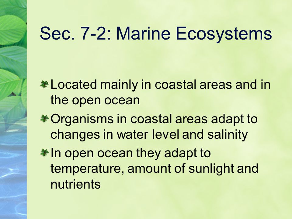 Sec. 7-2: Marine Ecosystems Located mainly in coastal areas and in the open ocean Organisms in coastal areas adapt to changes in water level and salin