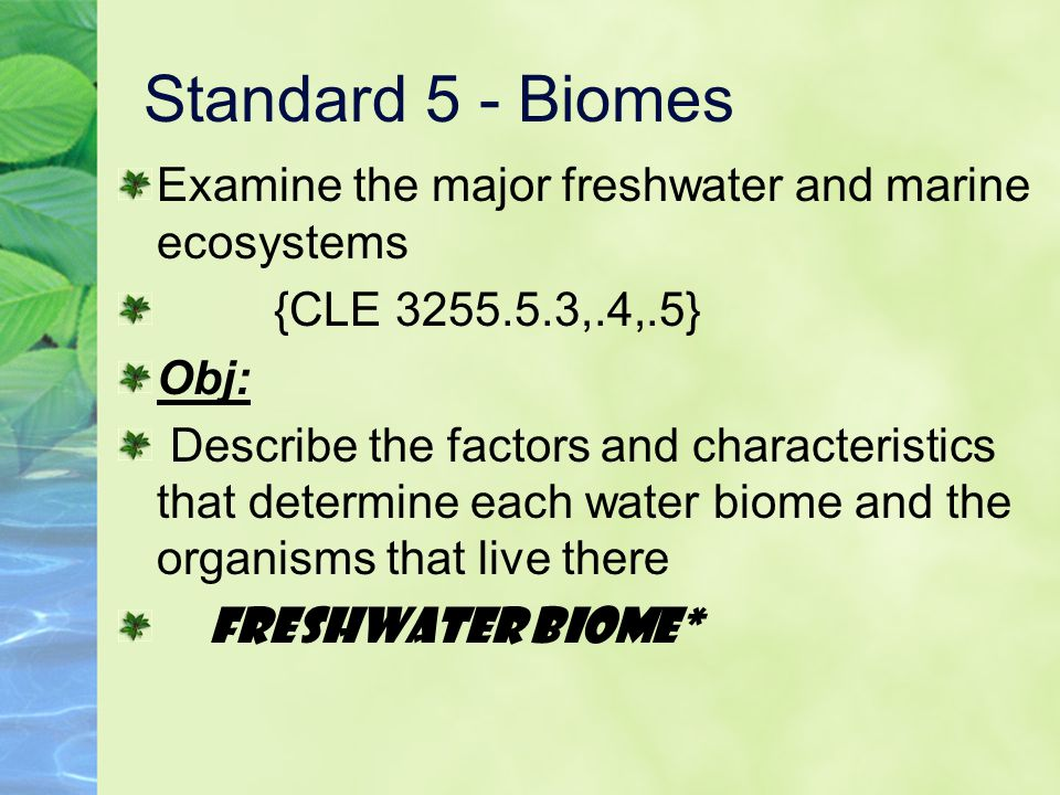 Standard 5 - Biomes Examine the major freshwater and marine ecosystems {CLE 3255.5.3,.4,.5} Obj: Describe the factors and characteristics that determine each water biome and the organisms that live there Marine Biome*