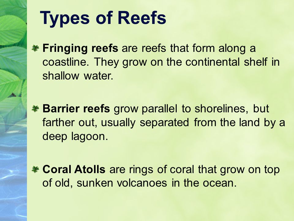 Types of Reefs Fringing reefs are reefs that form along a coastline. They grow on the continental shelf in shallow water. Barrier reefs grow parallel