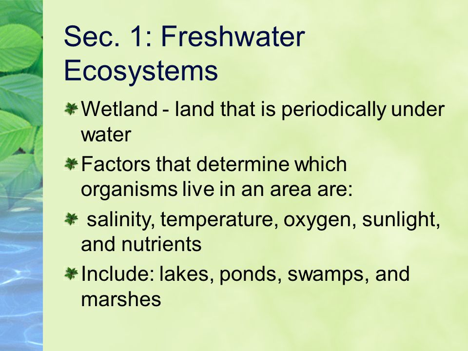 Sec. 1: Freshwater Ecosystems Wetland - land that is periodically under water Factors that determine which organisms live in an area are: salinity, te