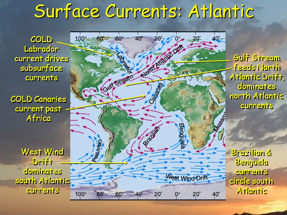 Surface Currents: Atlantic West Wind Drift dominates south Atlantic currents Gulf Stream feeds North Atlantic Drift, dominates north Atlantic currents