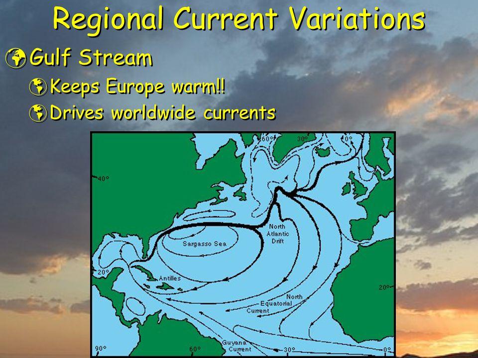 Regional Current Variations Gulf Stream  Keeps Europe warm!!  Drives worldwide currents Gulf Stream  Keeps Europe warm!!  Drives worldwide current
