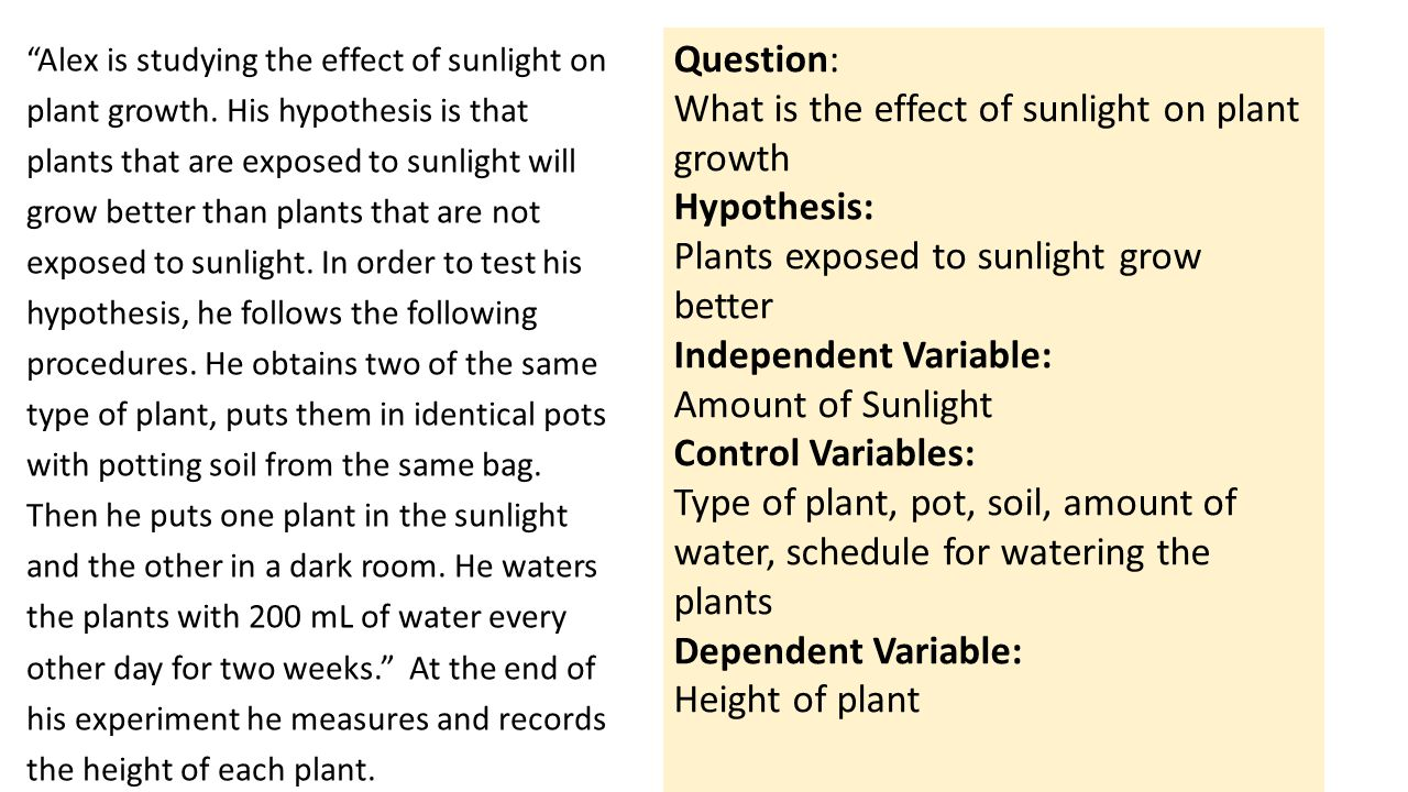 Question: What is the effect of sunlight on plant growth Hypothesis: Plants exposed to sunlight grow better Independent Variable: Amount of Sunlight Control Variables: Type of plant, pot, soil, amount of water, schedule for watering the plants Dependent Variable: Height of plant