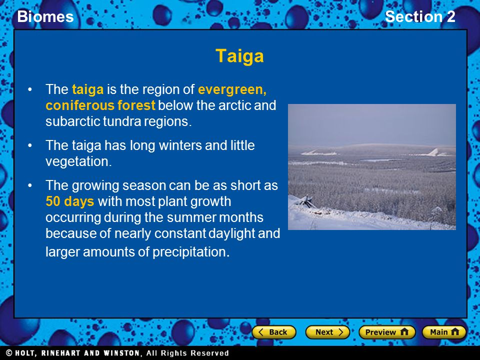 BiomesSection 2 Taiga The taiga is the region of evergreen, coniferous forest below the arctic and subarctic tundra regions. The taiga has long winter