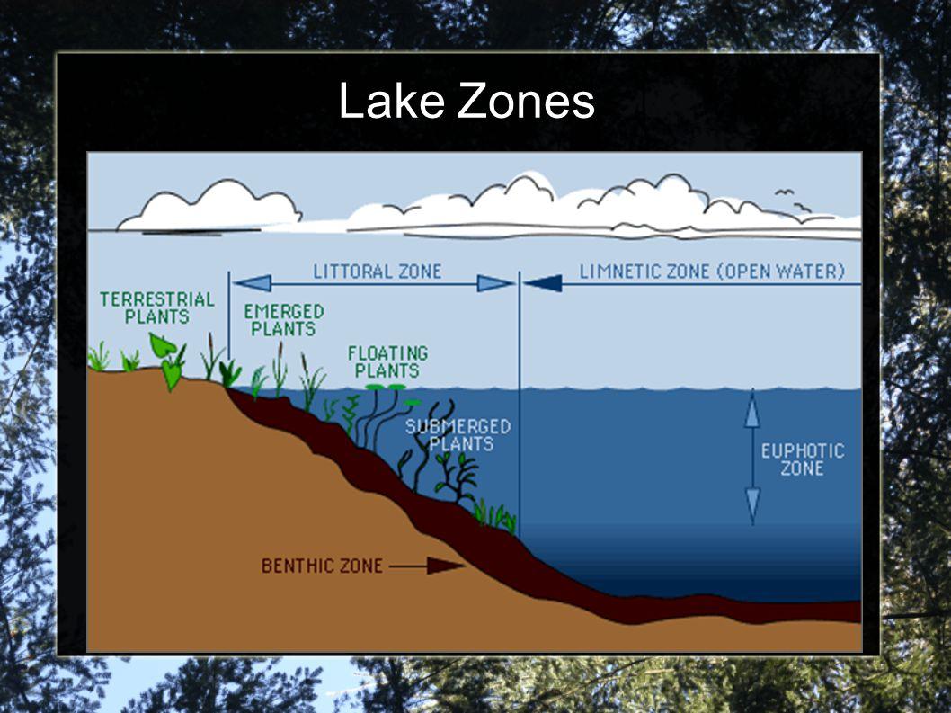 Lake Zones