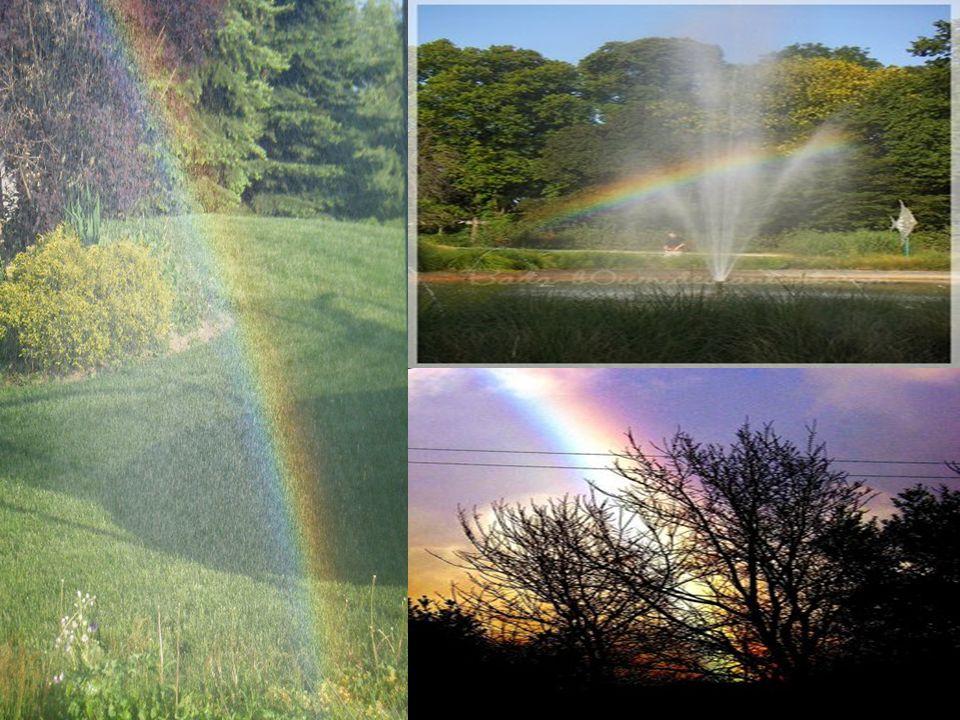 The global capital of the rainbows is Honolulu, in Hawaii.