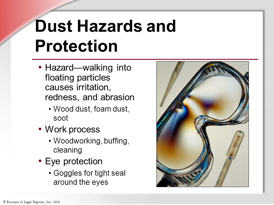 © Business & Legal Reports, Inc. 0606 Dust Hazards and Protection Hazard—walking into floating particles causes irritation, redness, and abrasion Wood