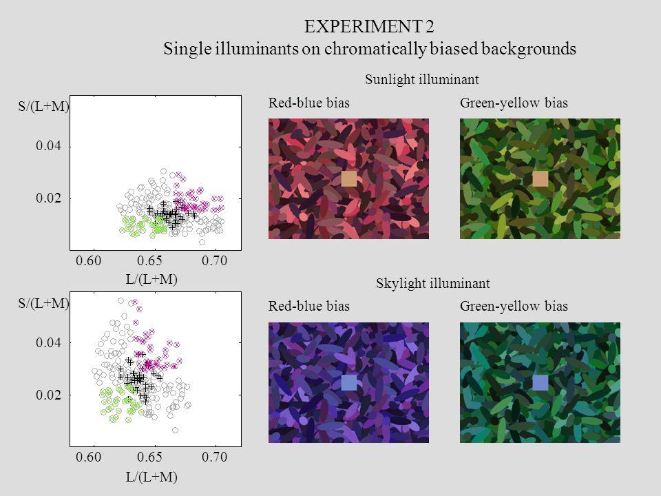 EXPERIMENT 2 Single illuminants on chromatically biased backgrounds 0.600.650.70 0.600.650.70 0.04 0.02 0.04 0.02 L/(L+M) S/(L+M) Sunlight illuminant Red-blue biasGreen-yellow bias Skylight illuminant Red-blue biasGreen-yellow bias