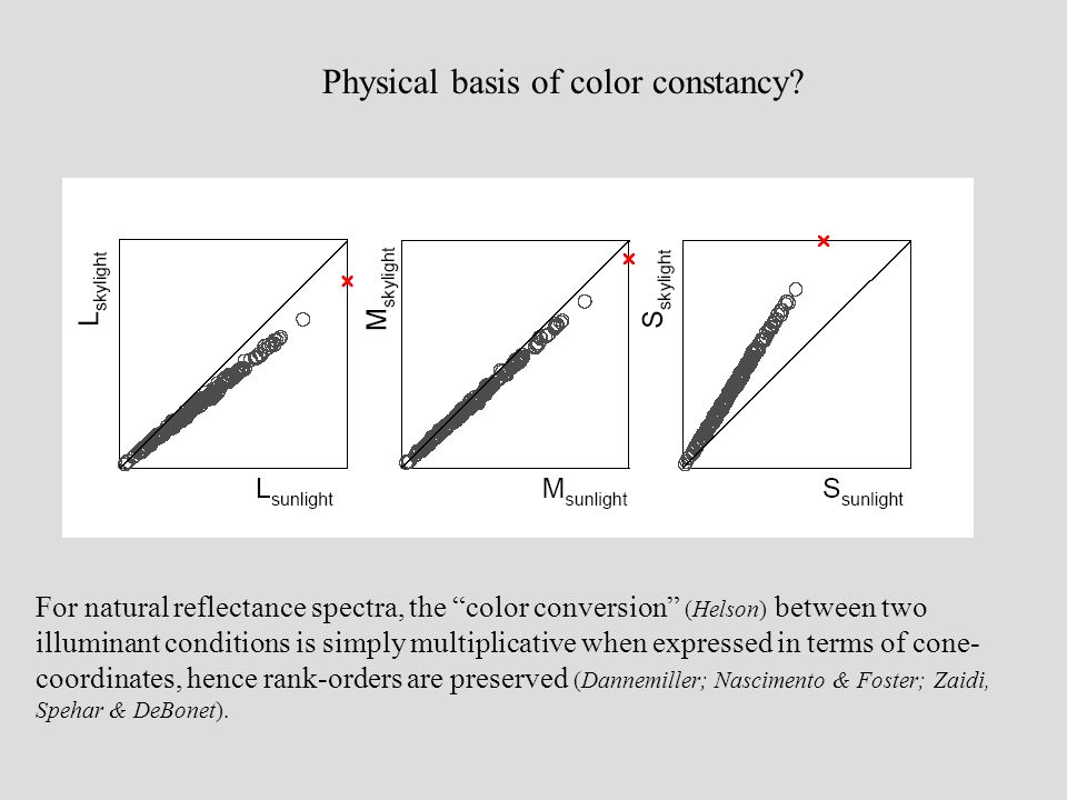 "Physical basis of color constancy? For natural reflectance spectra, the ""color conversion"" (Helson) between two illuminant conditions is simply multip"