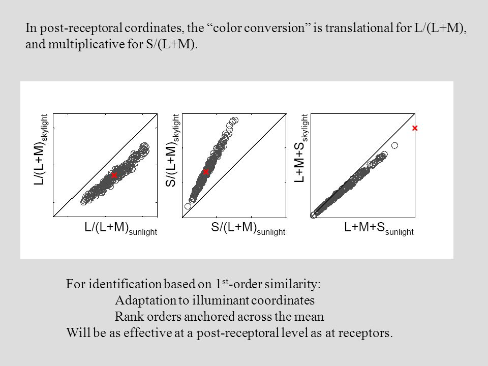 "In post-receptoral cordinates, the ""color conversion"" is translational for L/(L+M), and multiplicative for S/(L+M). For identification based on 1 st -"
