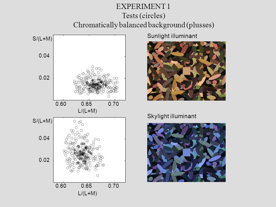 Sunlight illuminant Skylight illuminant EXPERIMENT 1 Tests (circles) Chromatically balanced background (plusses) 0.600.650.70 0.600.650.70 0.04 0.02 0.04 0.02 L/(L+M) S/(L+M)