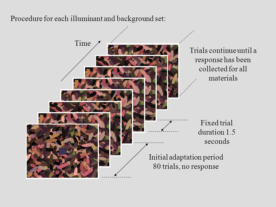 Fixed trial duration 1.5 seconds Time Procedure for each illuminant and background set: Initial adaptation period 80 trials, no response Trials contin