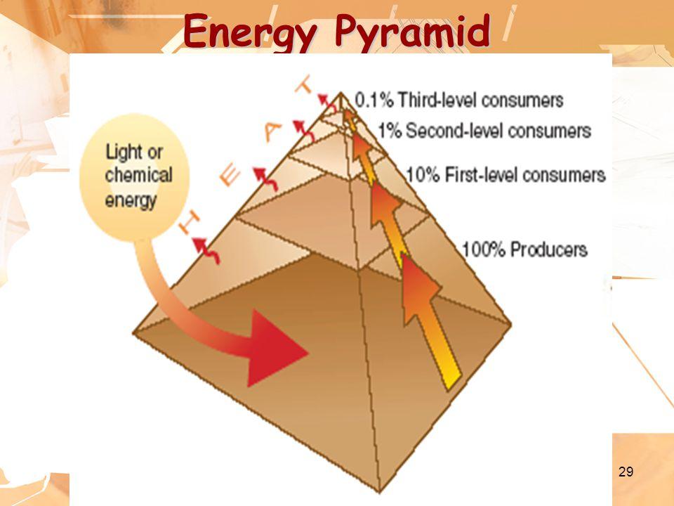 29 Energy Pyramid