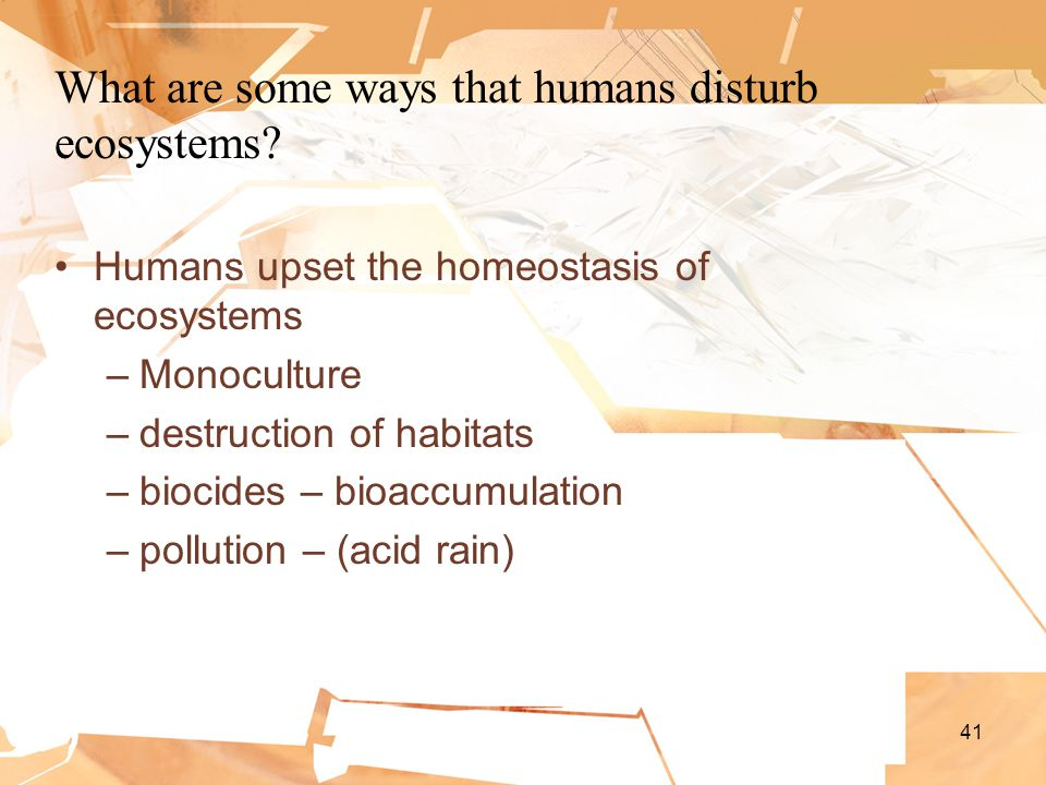 41 What are some ways that humans disturb ecosystems.